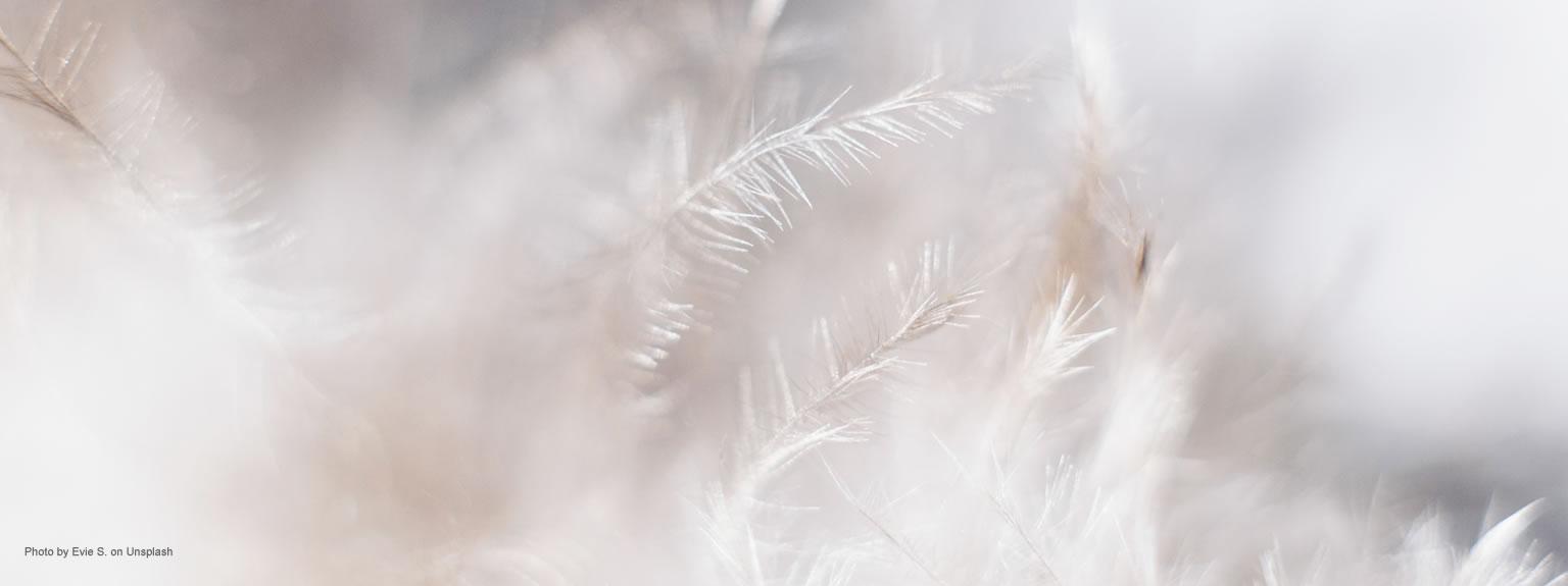 Healing Light Online Pyschic Readings Mediumship post image