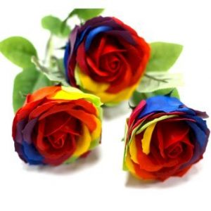 Healing Light Online Psychic Readings and Merchandise Rainbow Rose Soap Flower from Ancient Wisdom