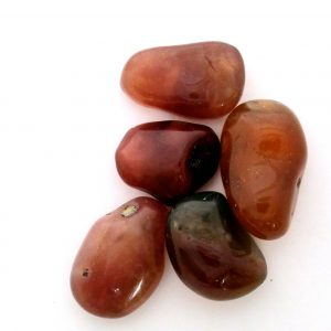 Healing Light Online Psychics New Age Shop Merchandise Carnelian Tumblestone