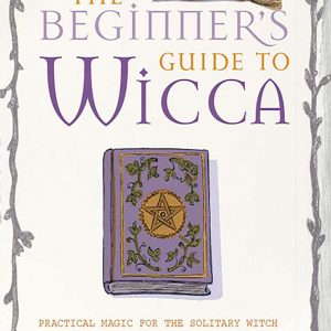 Healing Light Online Psychics Wicca The Begginers Guide by Kirsten Riddle for sale