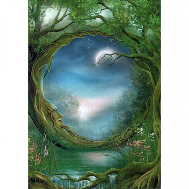 Healing Light Online Psychic Readings and Merchandise Day and Night Blank card by Tree Free
