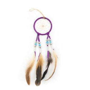 Healing Light Online Psychic Readings and Merchandise Purple Dream Catcher