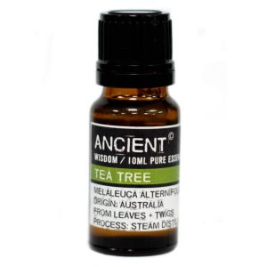 Healing Light Online Psychic Readings and Merchandise Ancient Wisdom essential Oil Tea tree