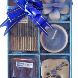 Healing Light Online Psychic Readings and Merchandise Blue ocean incense gift set