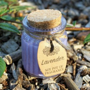 Healing Light Online Psychic Readings and Merchandise Soy Pot candle Lavender