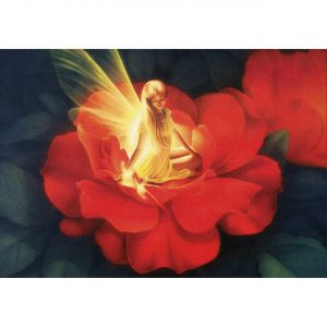 Healing Light Online Psychic Readings and Merchandise Night Light Greeting